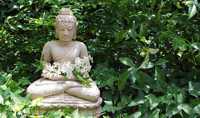 Frases sobre Buda