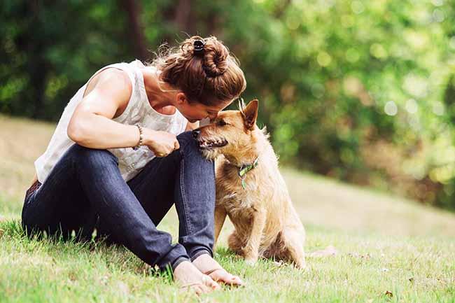 Consigue una mascota y ya no vas a estar solo