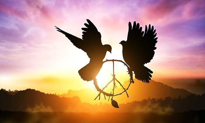 110 Frases Célebres De Paz Y Libertad