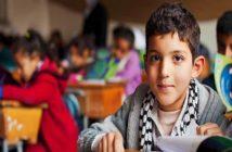 frases sobre la educación