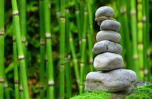 frases Zen para meditar