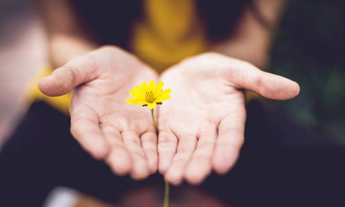 85 Poderosas Frases De Esperanza