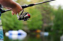 Frases de pesca