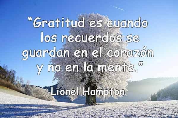 85 Frases De Agradecimiento Y Gratitud Para Reflexionar