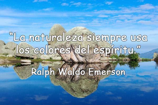 60 Frases De La Naturaleza Realmente Inspiradoras