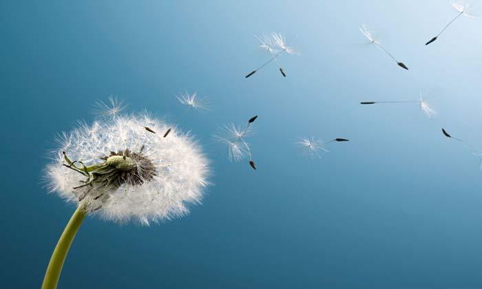 Consejos para que experimentes más libertad