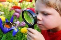 Tener curiosidad