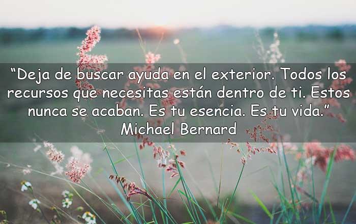 Frases de Michael Bernard