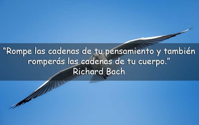 Frases de Richard Bach