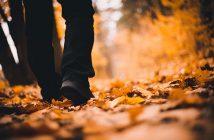 frases sobre caminar